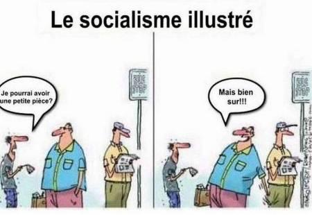 socialisme pour les Nuls